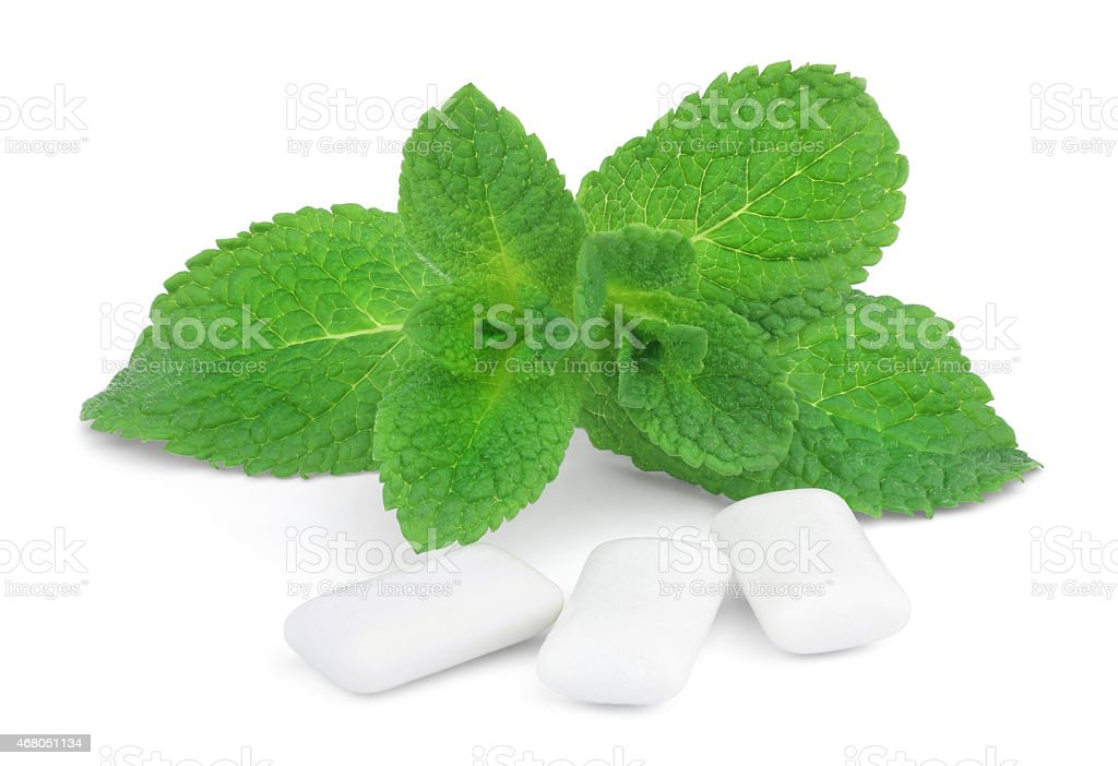 Mint and chewing gum stock photo