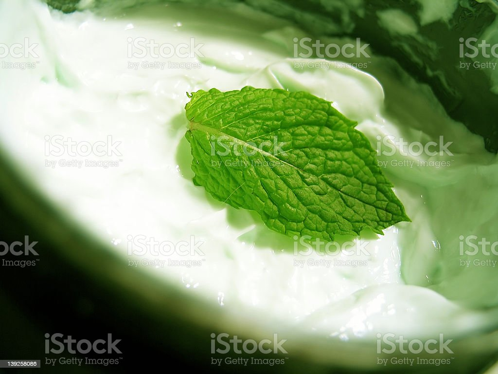 Mint Cream royalty-free stock photo