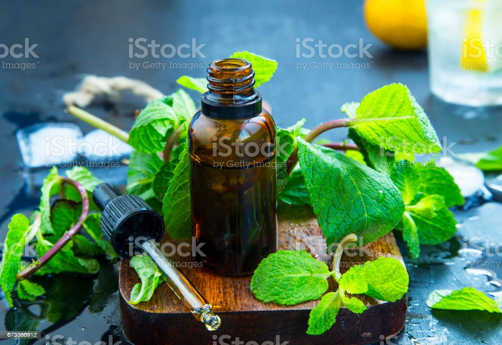 Mint essential oil in bottle .Fresh peppermint leaves with essential oil, alternative medicine stock photo