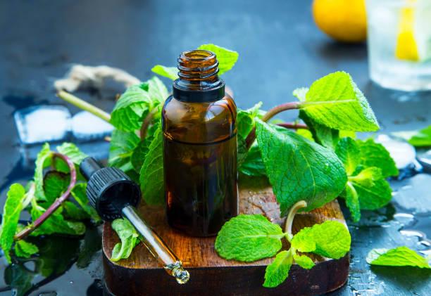nane önemli petrol şişe. taze nane yaprakları ile uçucu yağ, alternatif tıp - i̇ngiliz nanesi stok fotoğraflar ve resimler