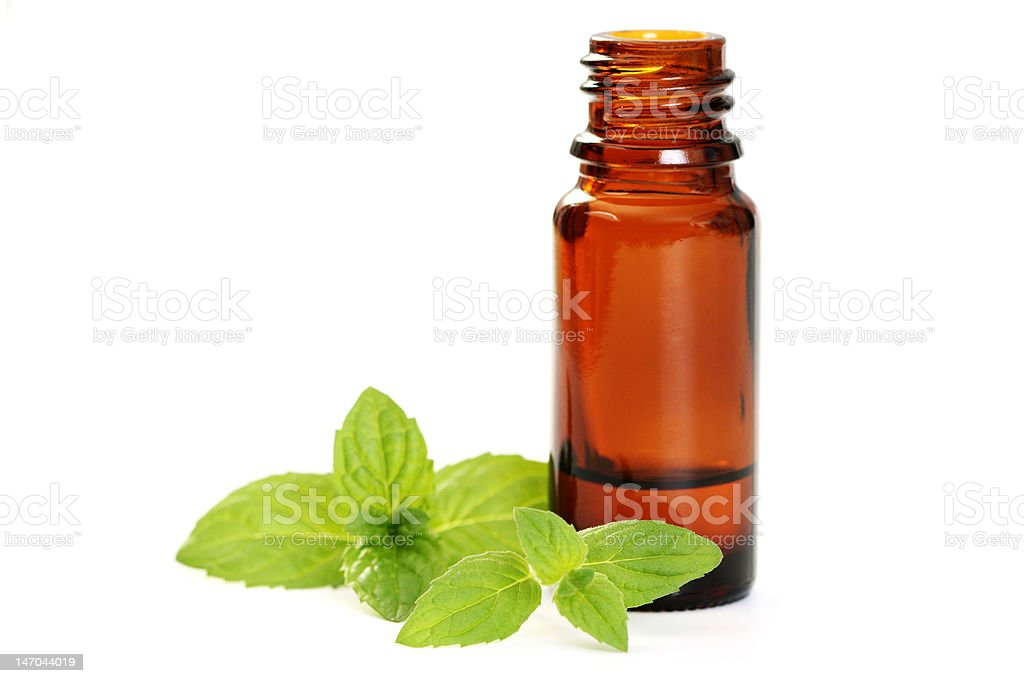 mint essential oil royalty-free stock photo