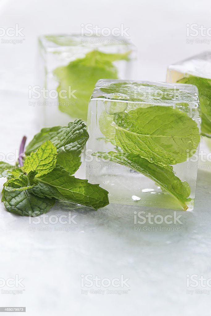 Mint Infused Ice Cube stock photo