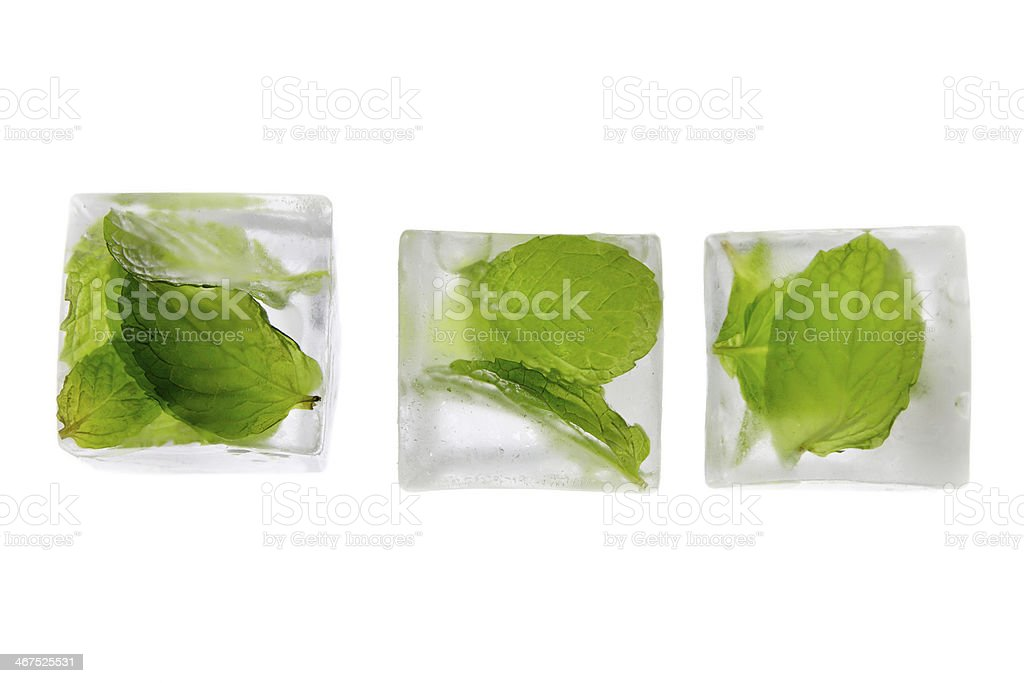 Mint Infused Ice Cubes stock photo