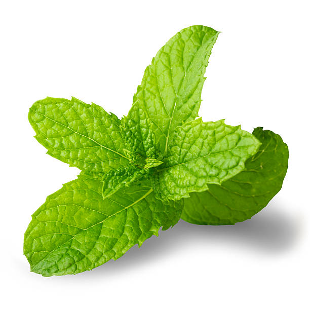Mint leaf with clipping path isolated on white stock photo