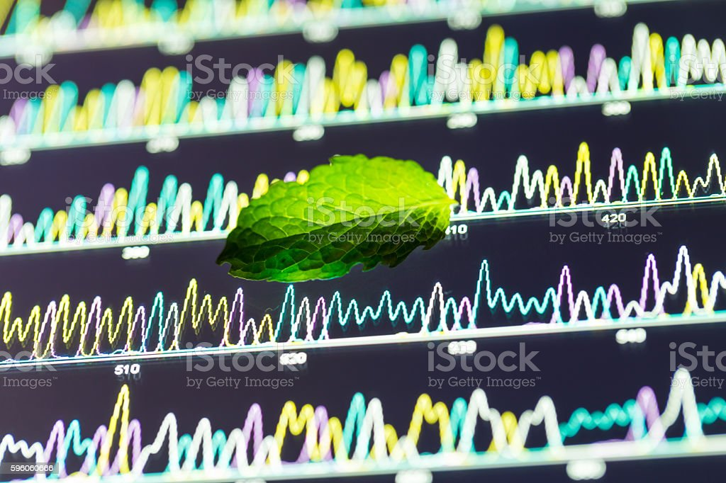 mint leaf with DNA sequencing royalty-free stock photo