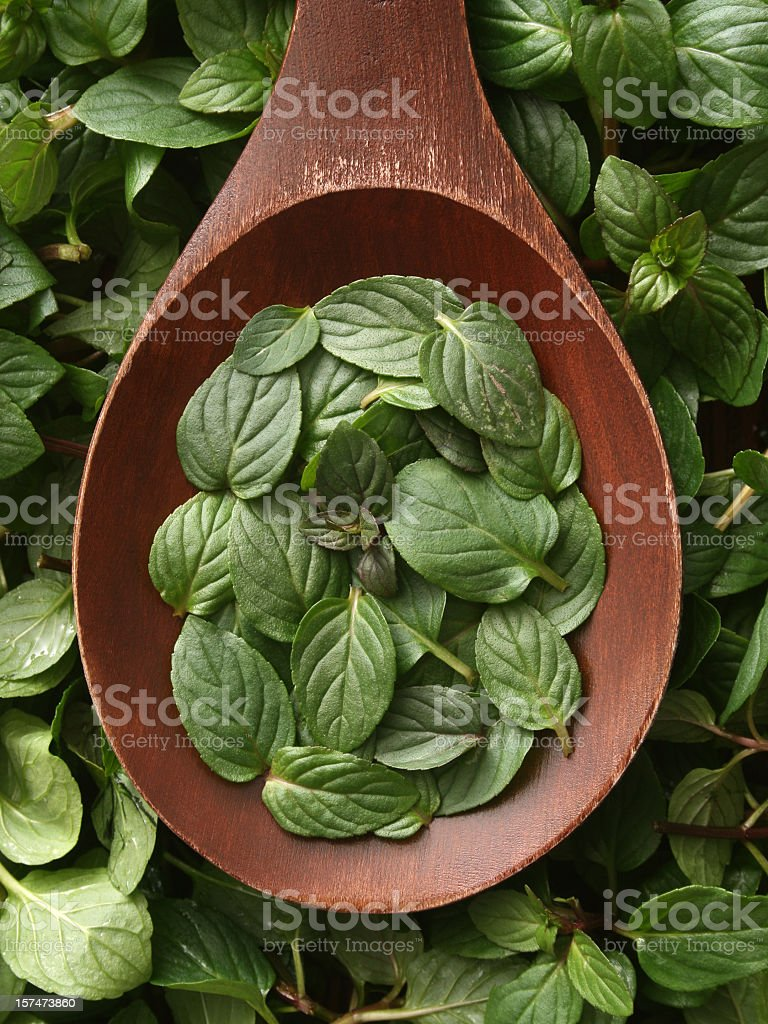 Mint leaves royalty-free stock photo