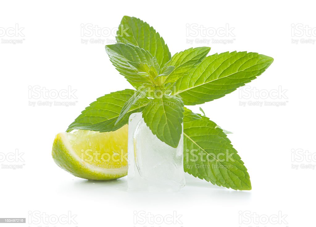 Mint, lime and ice royalty-free stock photo