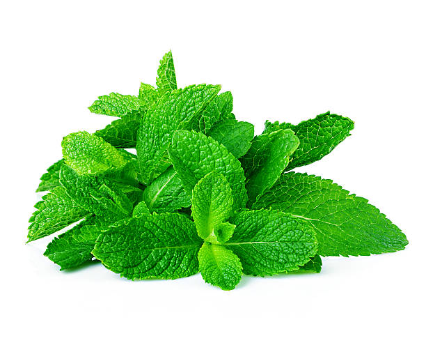 mint sheaf stock photo