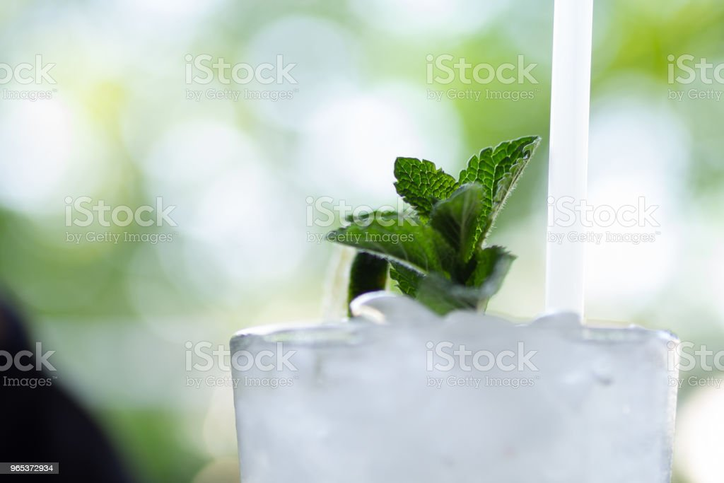 Mint sprig on the top of a refreshing mojito cocktail royalty-free stock photo