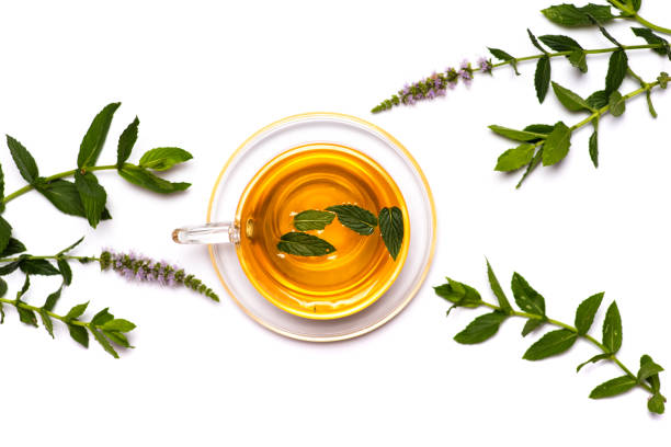 Mint tea with fresh leaves isolated on white background flat lay Mint tea with fresh peppermint leaves isolated on white background flat lay top view greentea stock pictures, royalty-free photos & images