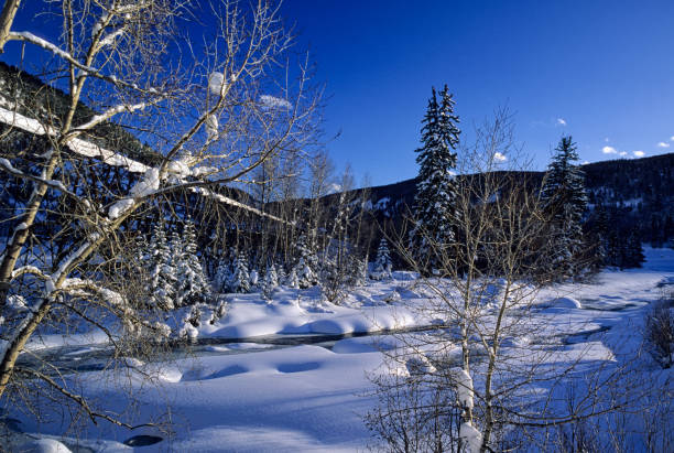Minturn Colorado Winter Snow Landscape Scenic Nature Minturn Colorado Winter Snow Landscape Scenic Nature - Gorgeous views along the Eagle River with fresh snow. Minturn, Colorado USA. minturn colorado stock pictures, royalty-free photos & images