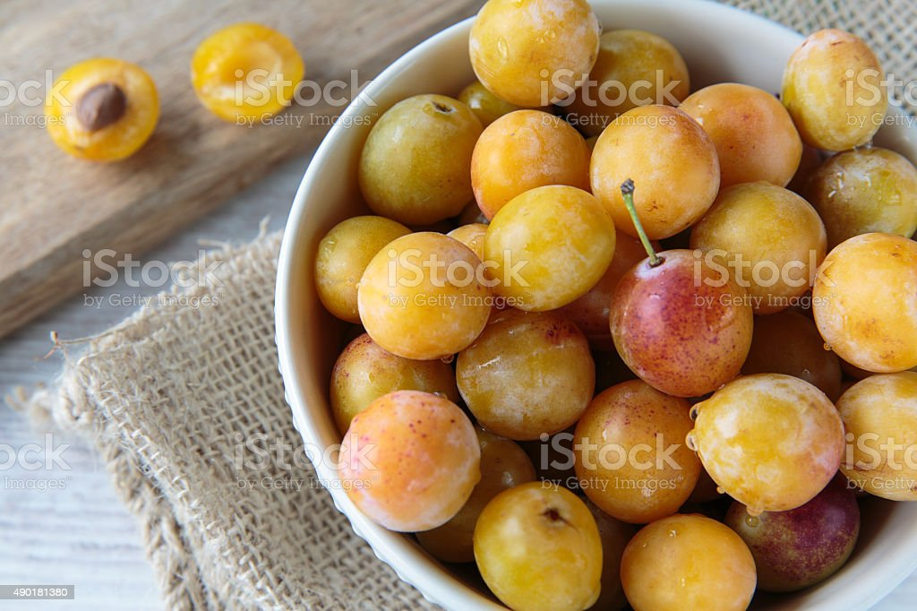 Mirabelle plums stock photo