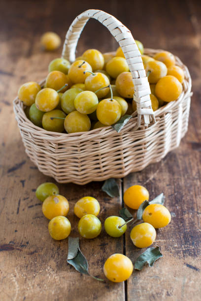 mirabelles in basketball stock photo