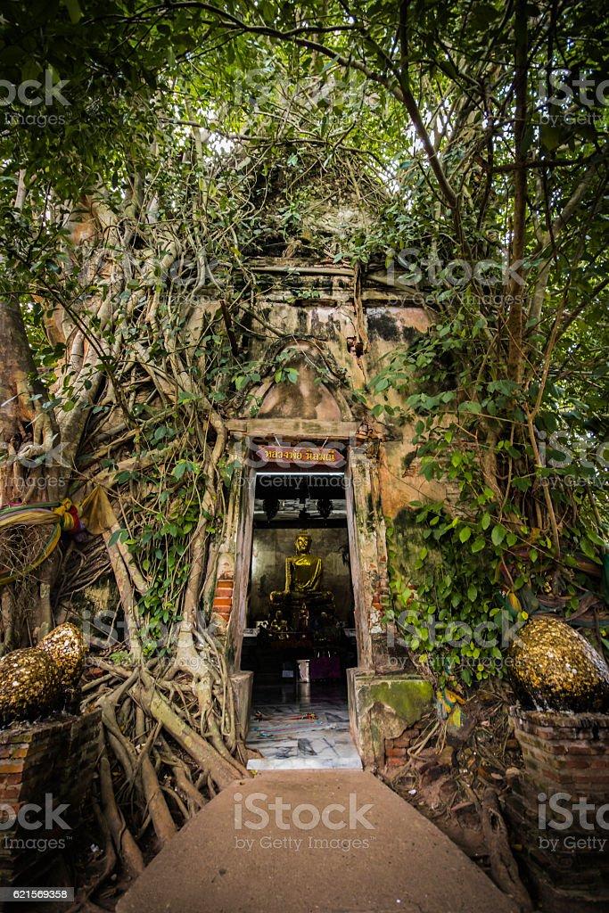 Miracle Thailand (Samut Songkhram) photo libre de droits