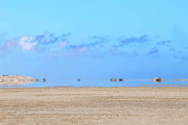 Mirage in the Namib Naukluft Desert, Namibia stock photo