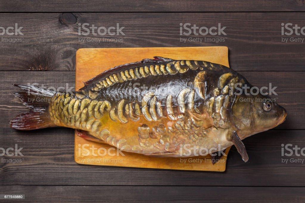 Mirror carp river fish on dark wooden table royalty-free stock photo
