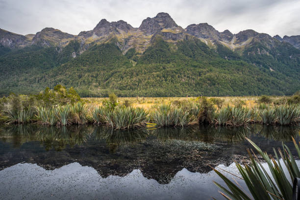 lac mirror, nouvelle-zélande - lac mirror lake photos et images de collection
