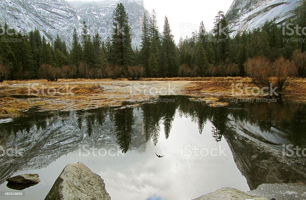 Mirror lake, reflection stock photo