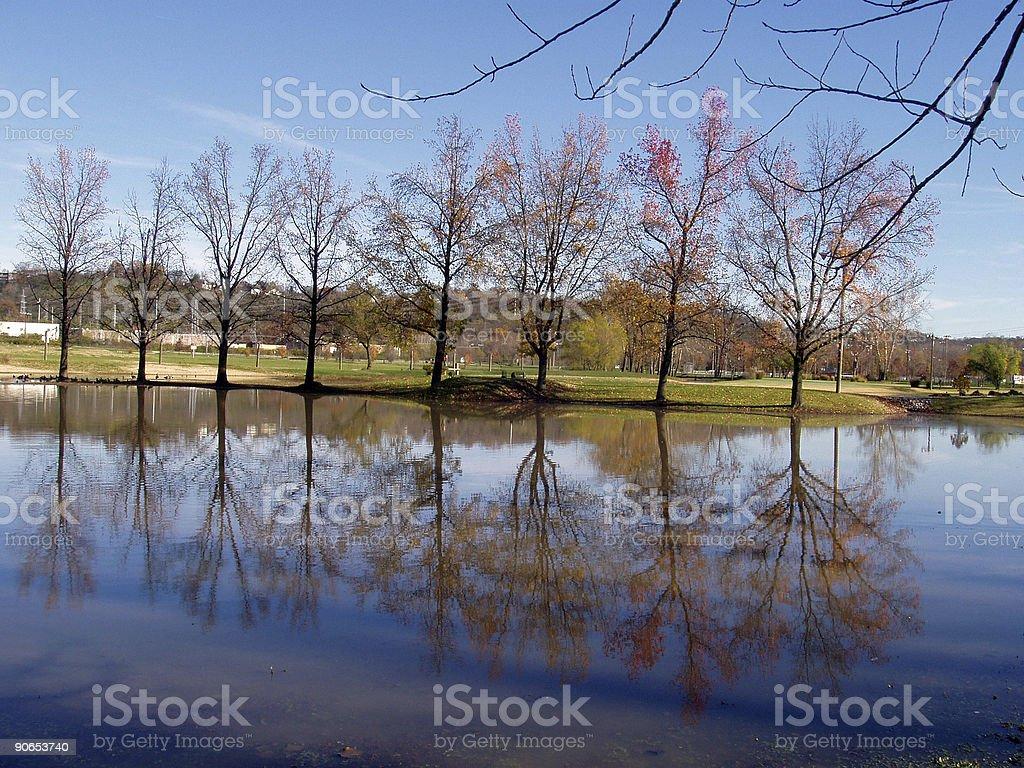 Mirror Mirror royalty-free stock photo
