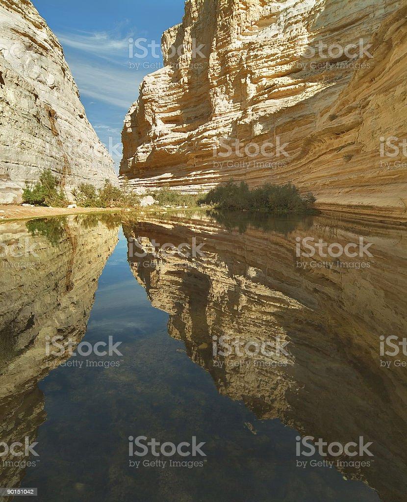 Mirror reflection royalty-free stock photo
