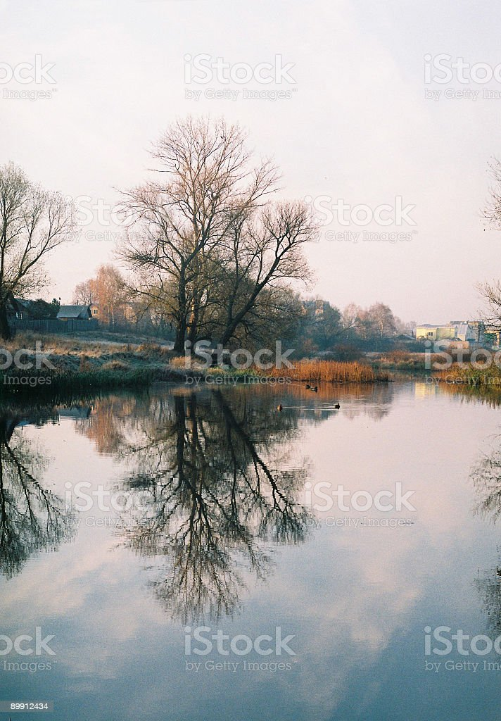Mirror the river royalty-free stock photo