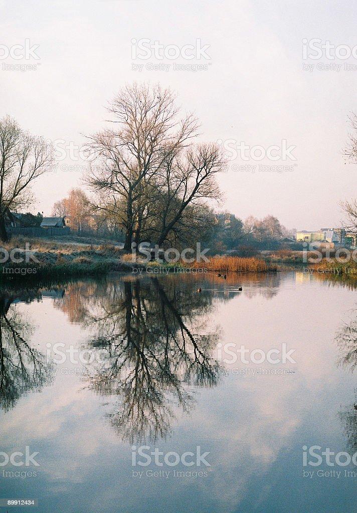 Specchio del fiume foto stock royalty-free