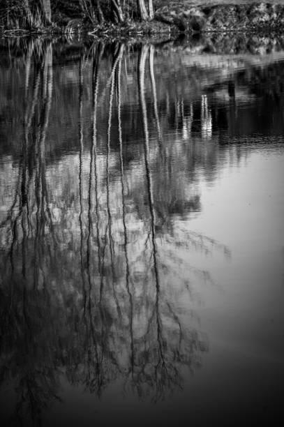 Spiegelverkehrt – Foto