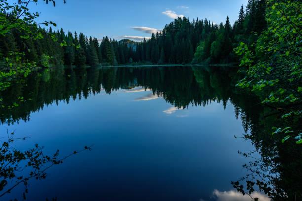 Spiegelung See – Foto