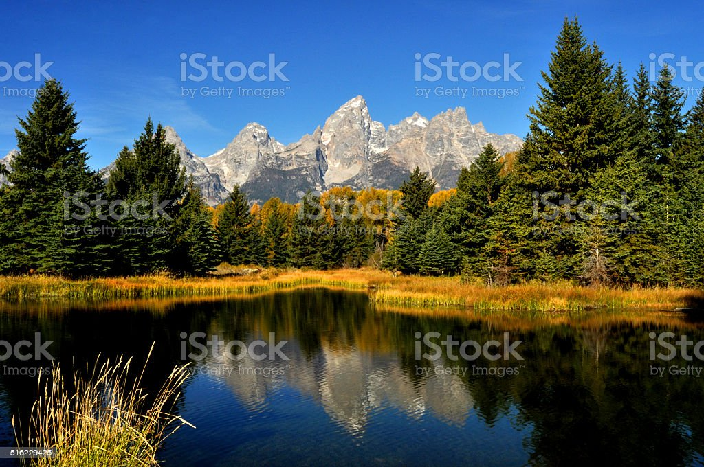 Mirrowed fall water reflection in The Grand Tetons stock photo