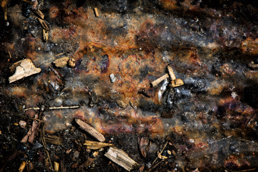 A detailed close up of a mix of organic and inorganic miscellaneous debris.  A great texture image for a background or overlay.
