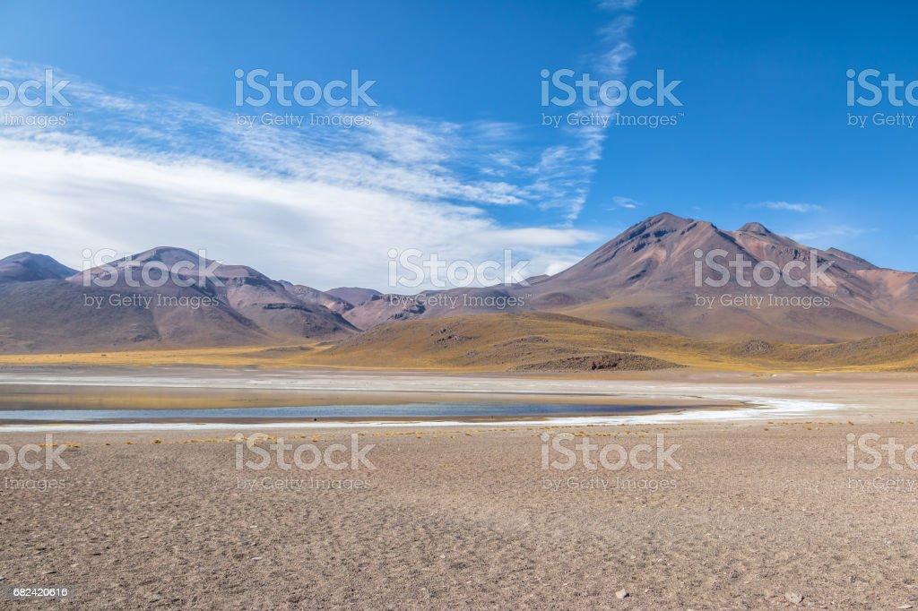 Miscanti Lagoon - Atacama Desert, Chile royalty-free stock photo
