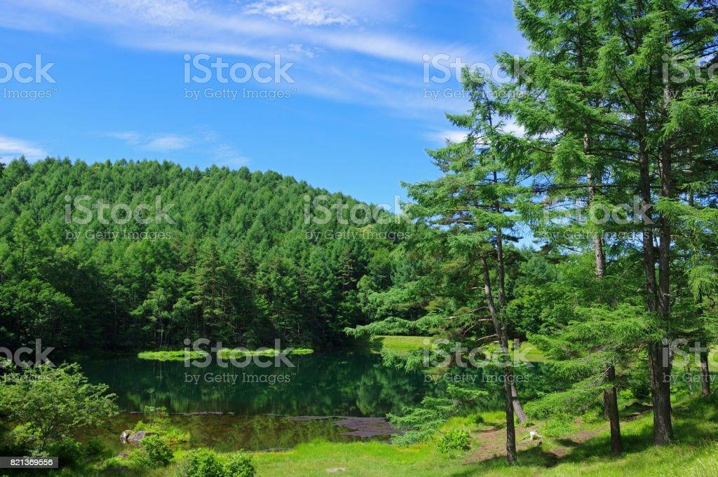 mishaka 池 (長野県) ストックフォト