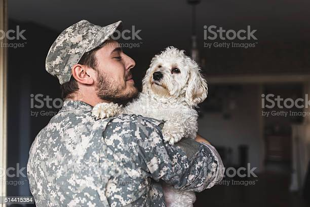 Missed you like crazy soldier hugging his dog picture id514415384?b=1&k=6&m=514415384&s=612x612&h= bnbnfqrmx0u07tuvazsarcz3pgazseatxkpwlvome4=