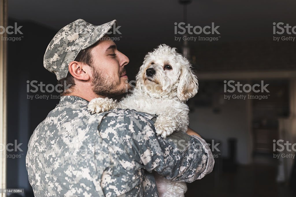 I missed you like crazy. Soldier hugging his dog. stock photo