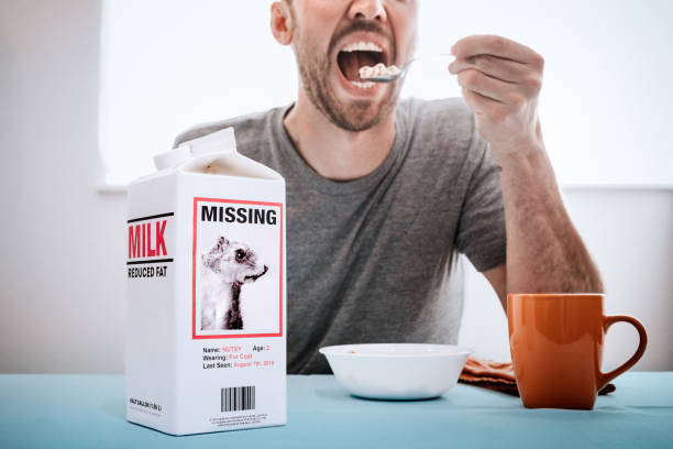 Missing Person Milk Carton With Squirrel While Man Eats Breakfast A man enjoys his morning bowl of cereal, the camera focused on a humorous missing persons ad posted on the side of a milk carton featuring a pet squirrel that has escaped. lost stock pictures, royalty-free photos & images