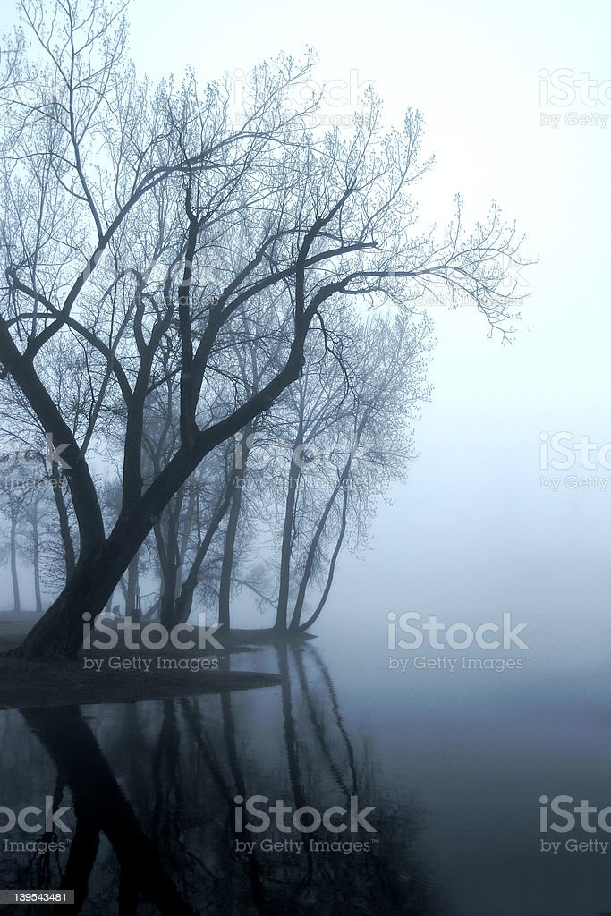 Mississippi Fog royalty-free stock photo