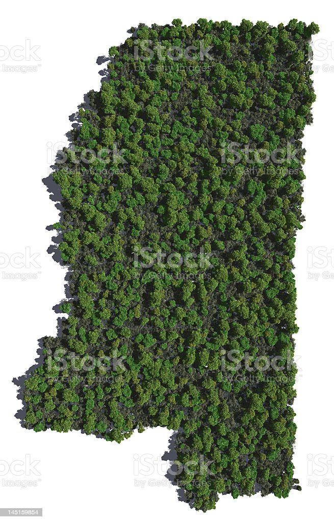 Mississippi in Trees stock photo