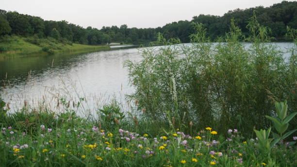 Missouri Public Park stock photo