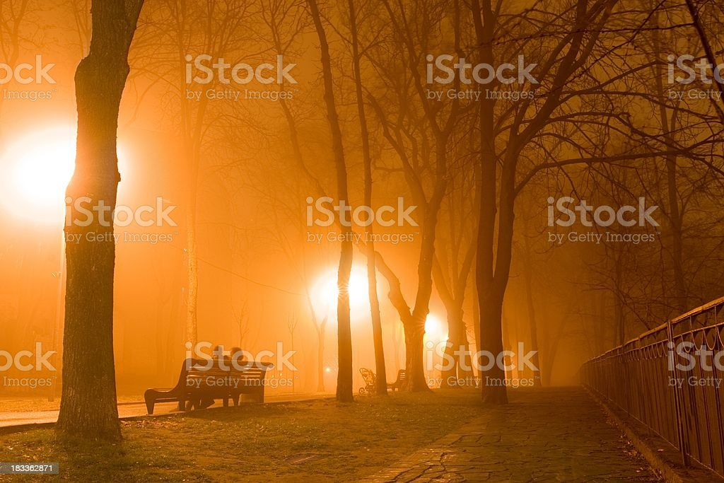 Nebel-Stadtpark – Foto