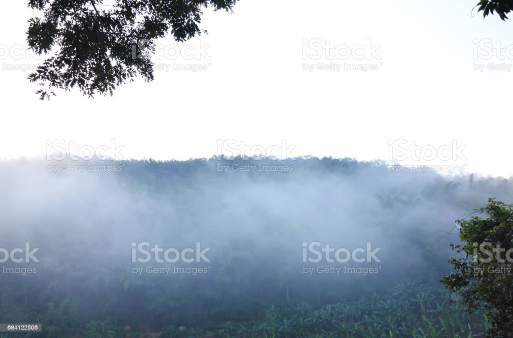 mist floating cover mountain in morning royalty free stockfoto