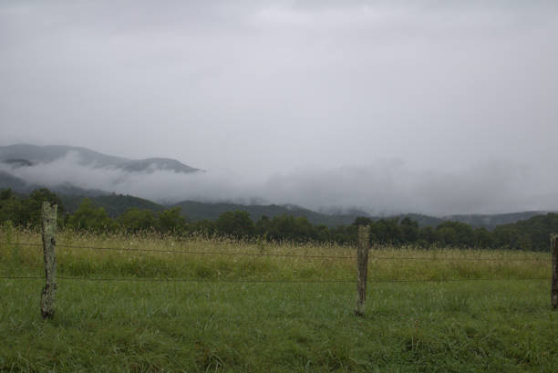 Mist hovering around the Great Smokey Mountains stock photo