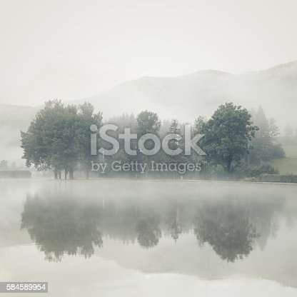 Mist on a lake at dawn with big trees and mountains range reflected in the calm water - Vintage Art toned