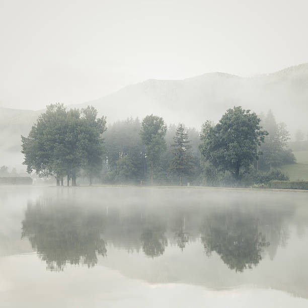 Mist on a lake at dawn with trees and mountains stock photo
