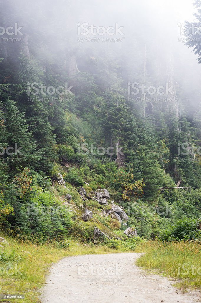 Nebel auf ein Bergpfad – Foto