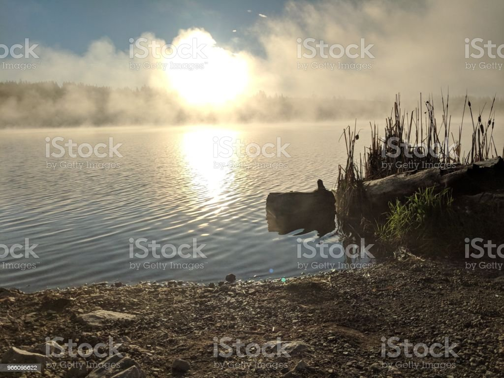 Mist on the morning water - Royalty-free Beach Stock Photo