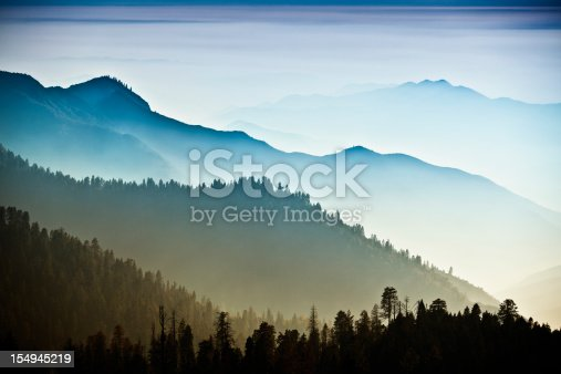 Trees and mist in the green forest of Stanislaus National Forest from Yosemite National Park