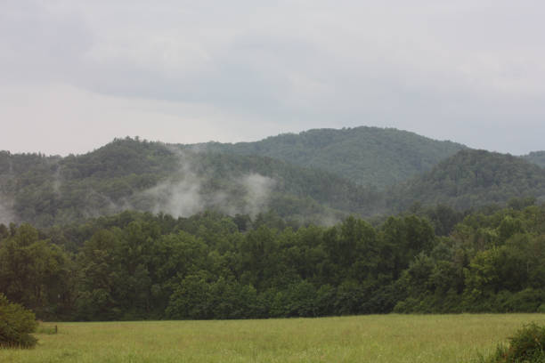 Mist on the Smokey Mountains stock photo