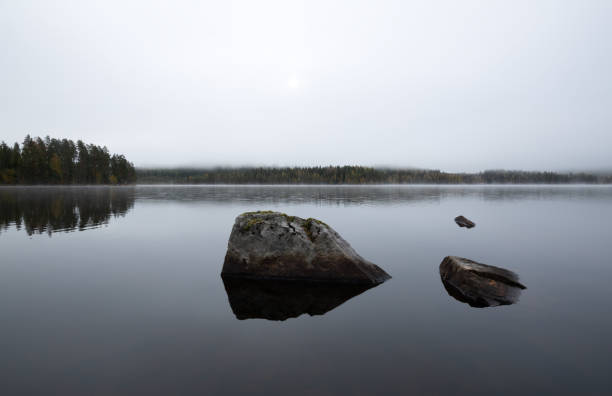 Mist over a calm natural lake stock photo