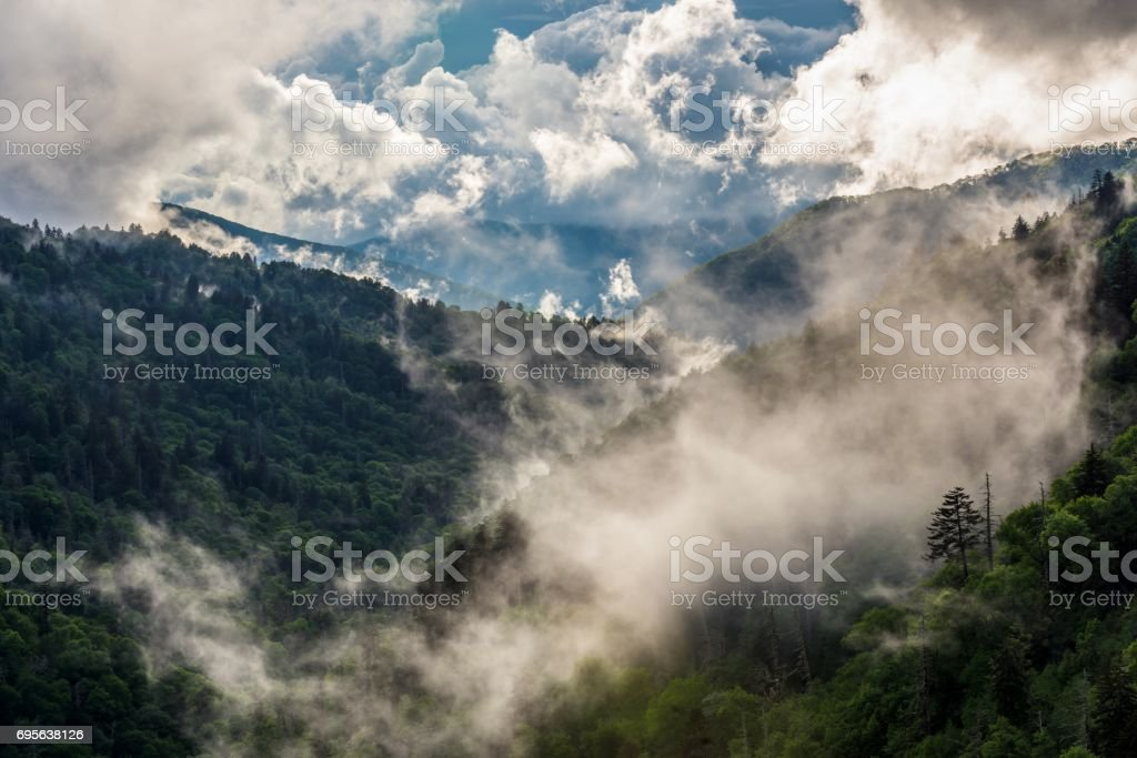 Mist Rising in Great Smoky Mountains National Park stock photo