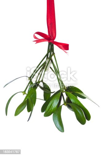 mistletoe bunch hanging on the red ribbon against white backgroundSome similar pictures from my portfolio: